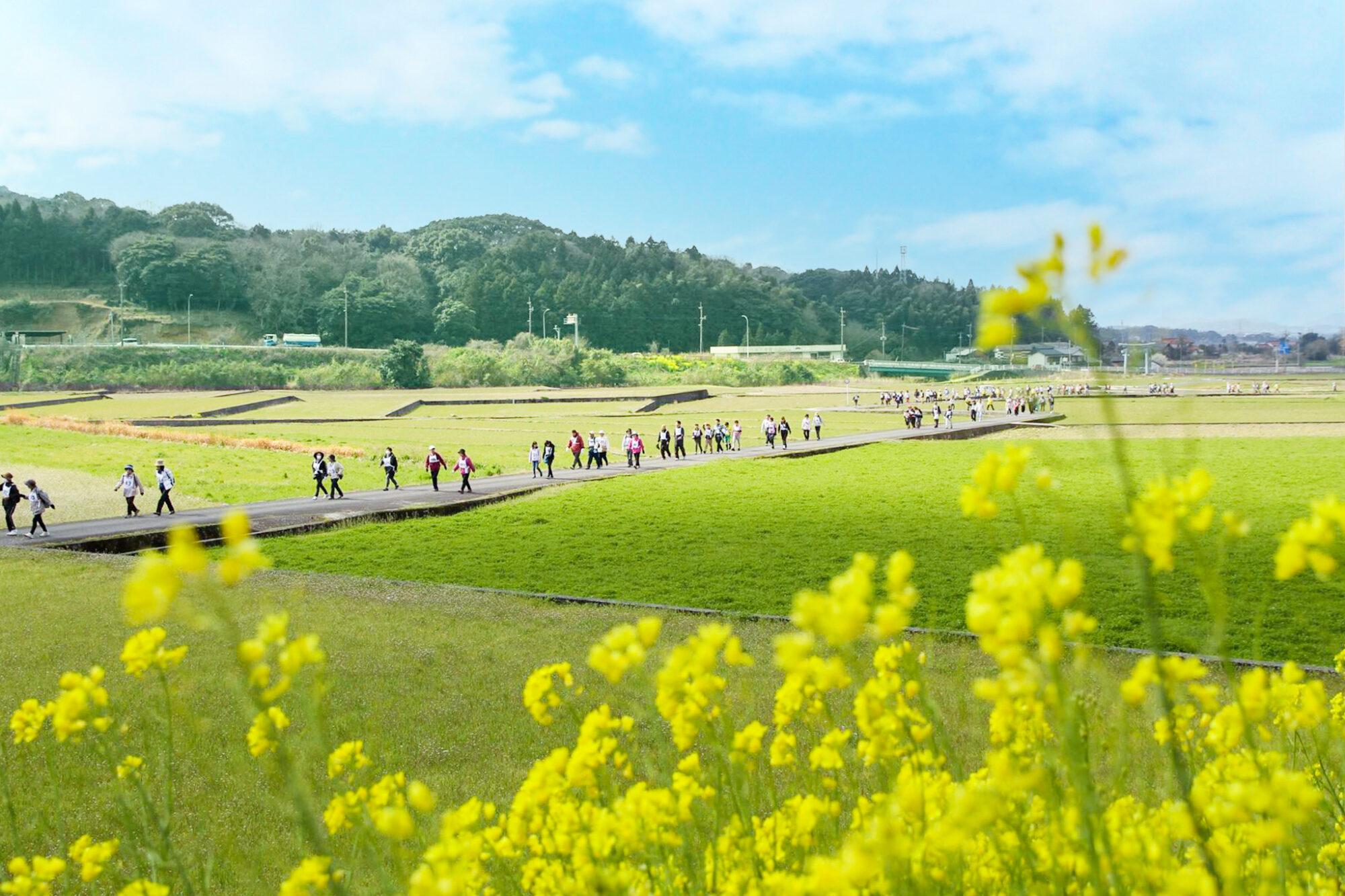 ⾹春町健康づくりウォーキング祭