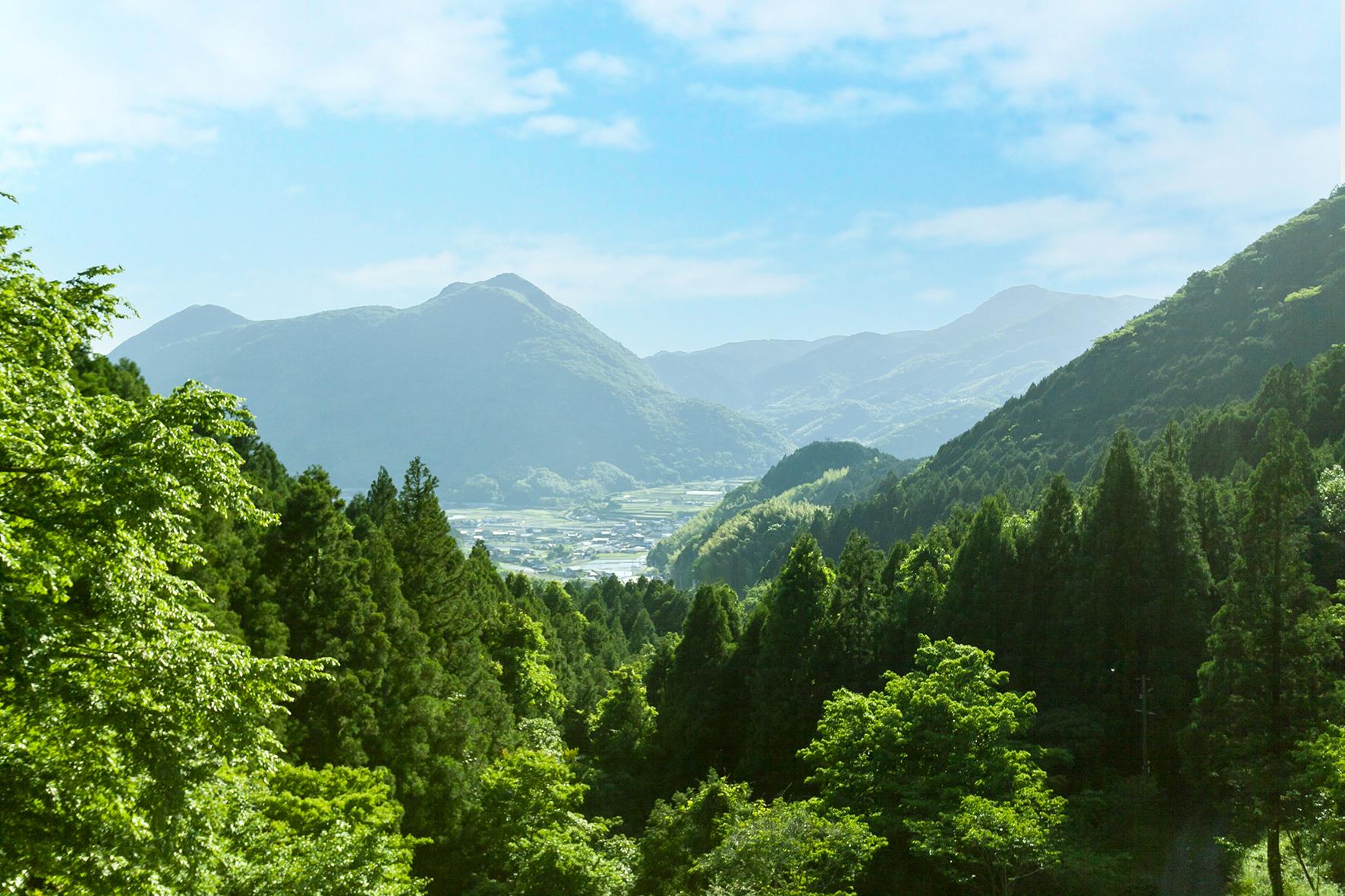 味⾒峠桜公園からの景色