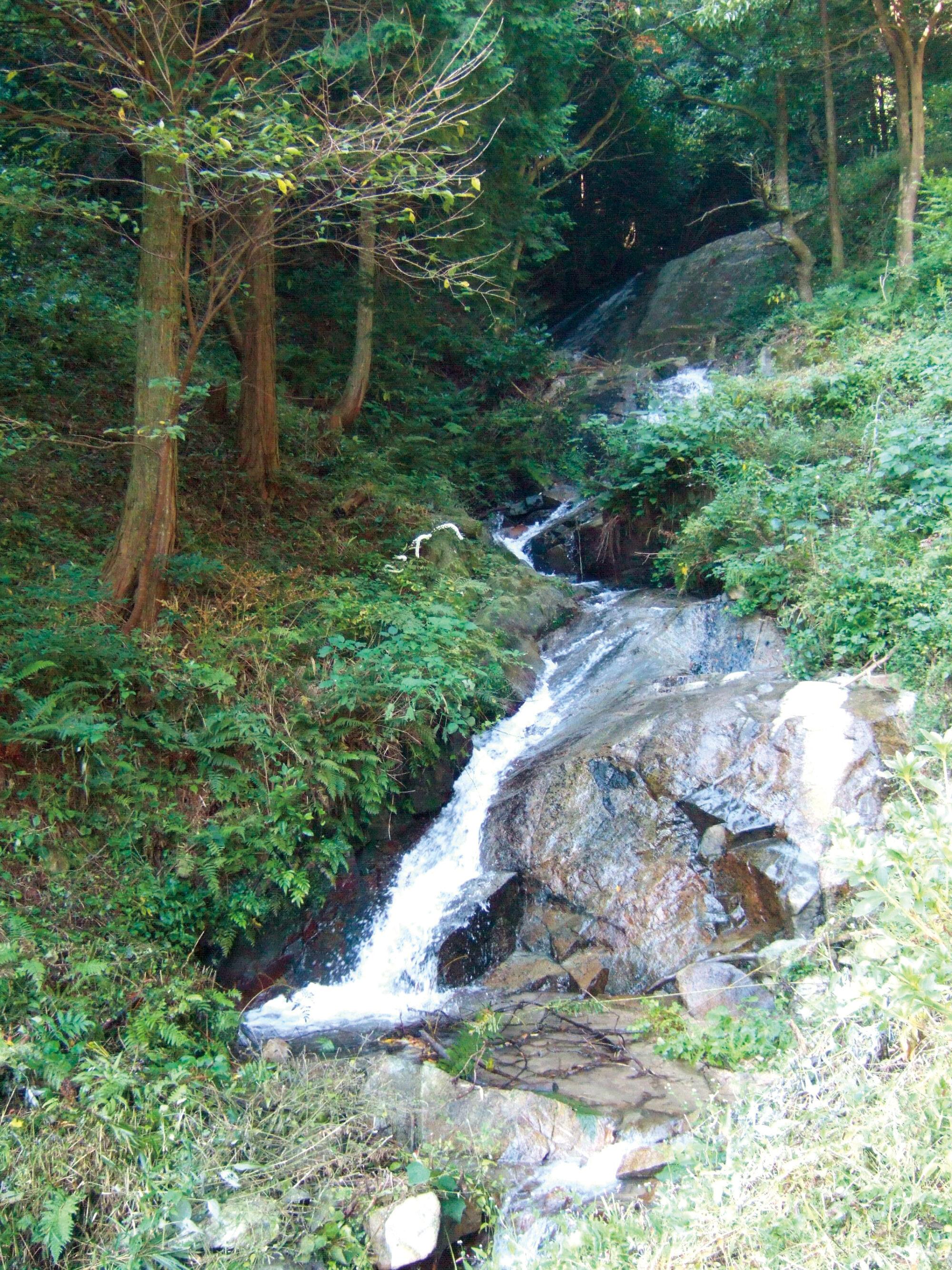 ⻑光円陣の滝桜公園