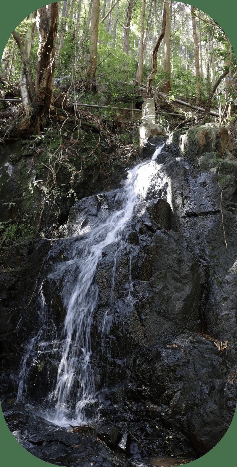 御⻑⽣の滝